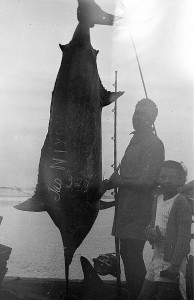 TASMAN_NEPTUNA_FISHING_REEL_074a